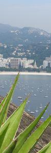 Rio-0328