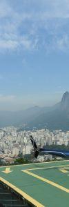 Rio-0429